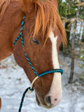 lariat rope braided hackamore