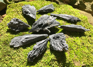 Black Kyanite Specimens