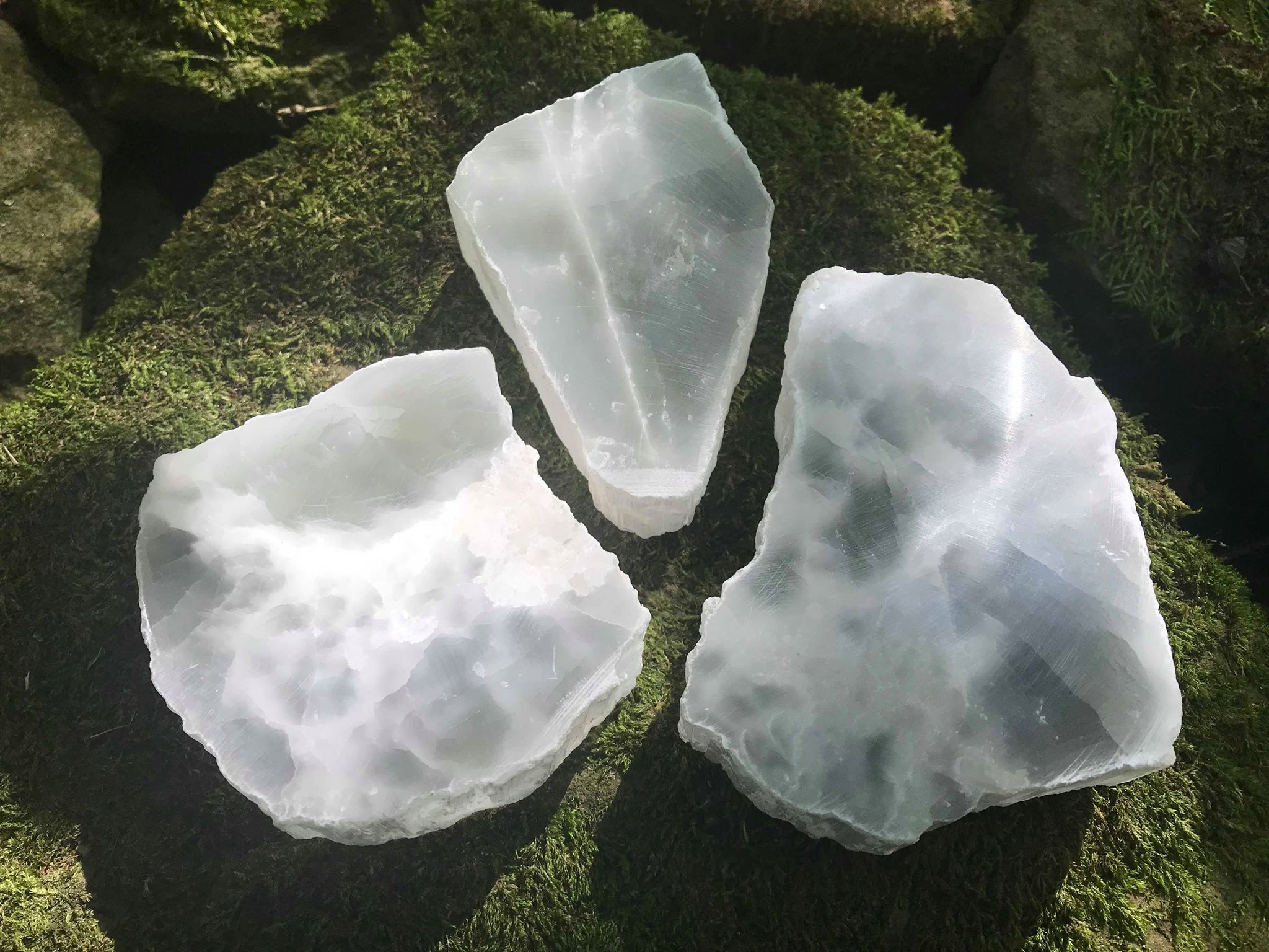 Selenite Slices - Gem Realm