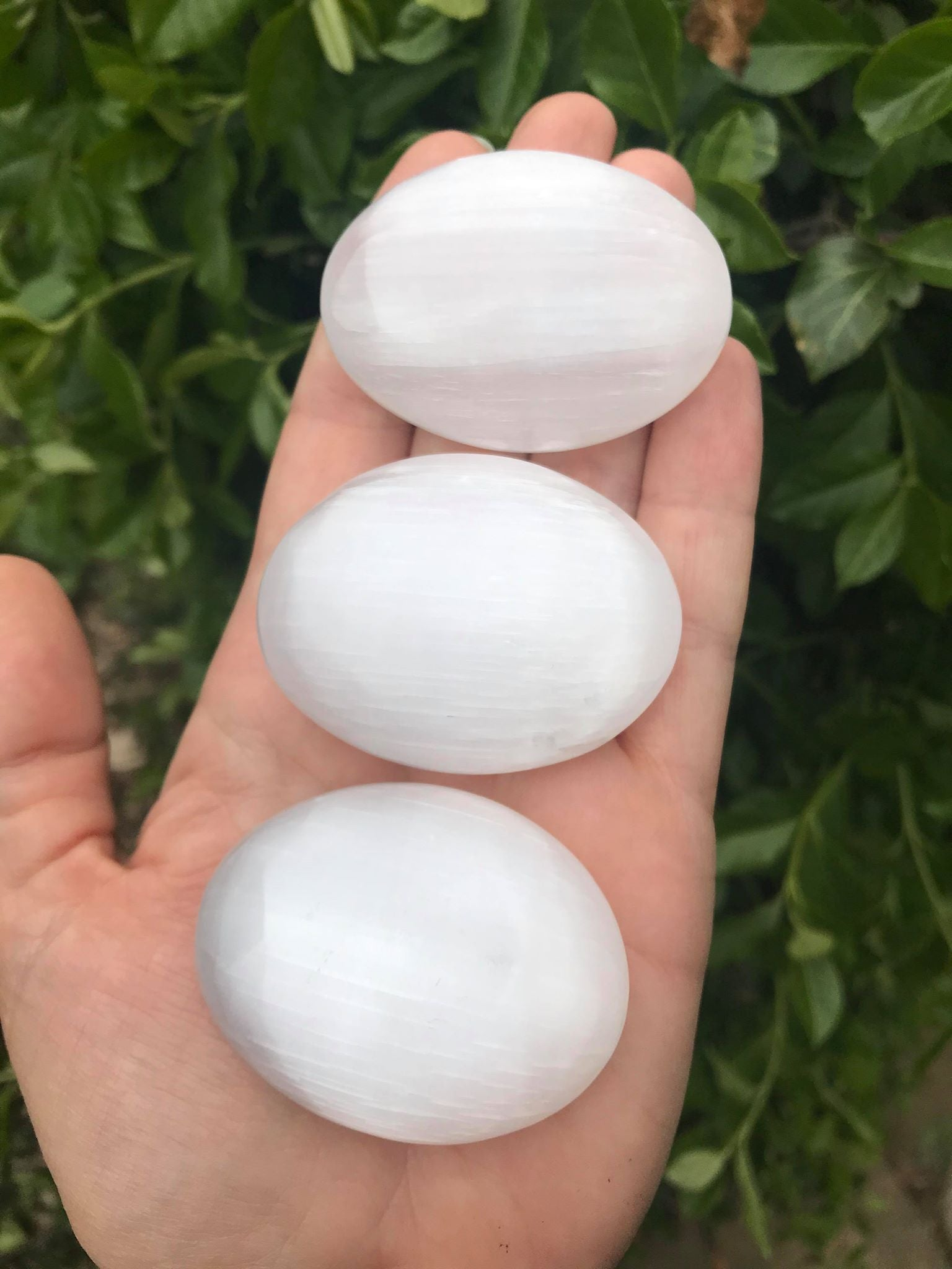 Selenite Palm Stones - Gem Realm