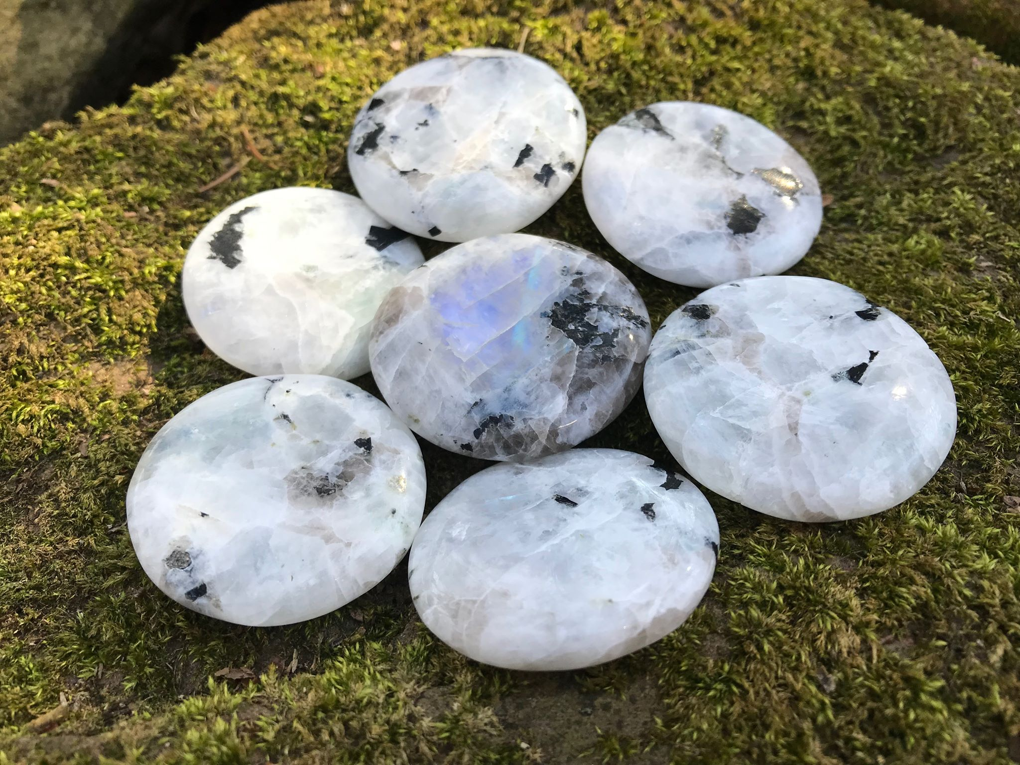 Rainbow Moonstone Palm Stones - Gem Realm