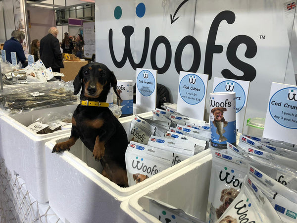 Dachshund on WOOFS' Crufts Stand