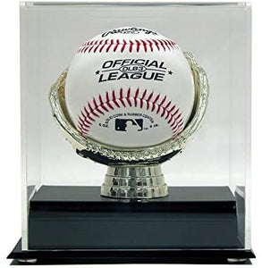 Gold Glove Baseball Case