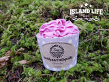 Bubbly Bath Cupcake - Island Life Soap