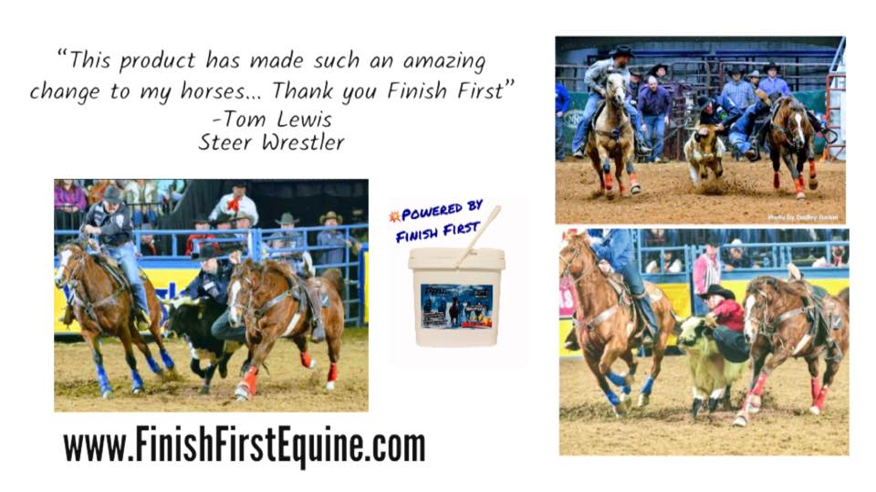 Champion Steer Wrestling Horse, MAVERICK, is Powered by Finish First