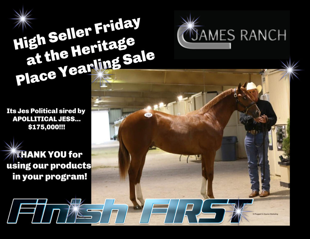 High Selling Yearling Uses FFE Horse Supplements
