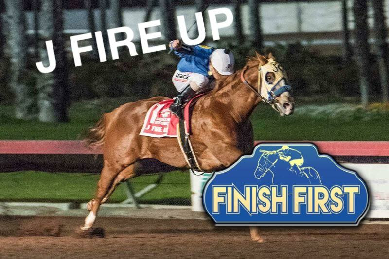 Building Champions with Finish First Horse Supplements