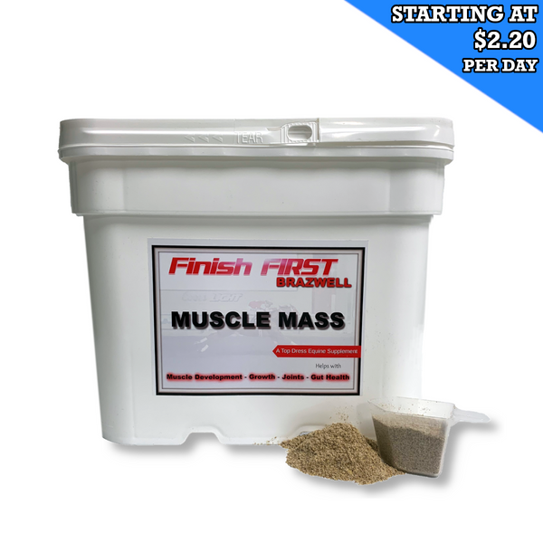 Brazwell270 Muscle Mass Weight Gain for Horses