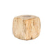 Tamarind Wood Stump