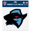 Dallas Renegades 8x8 Perfect Cut Decal