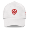 DC Defenders Official Unstructured Hat
