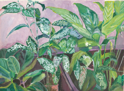 House Plants watercolor painting