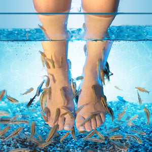 "MAN'S STINKY FEET ""ACCIDENTALLY"" KILL ALL FISH IN FISH SPA"