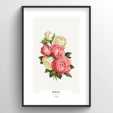 Rose Botanical Wholesale Art Prints