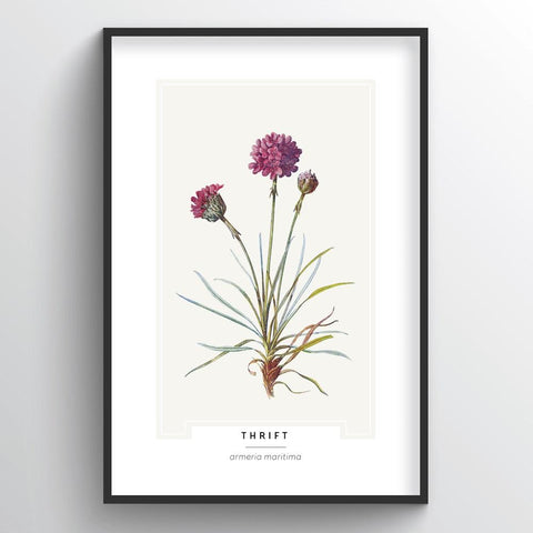 Thrift Botanical Wholesale Art Prints