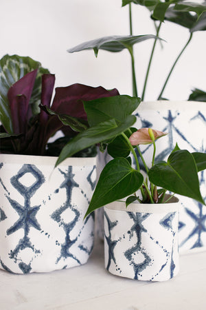 Ikat by Plant Sax