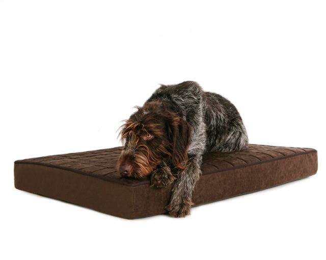 BuddyRest expands product offering with new orthopedic dog beds