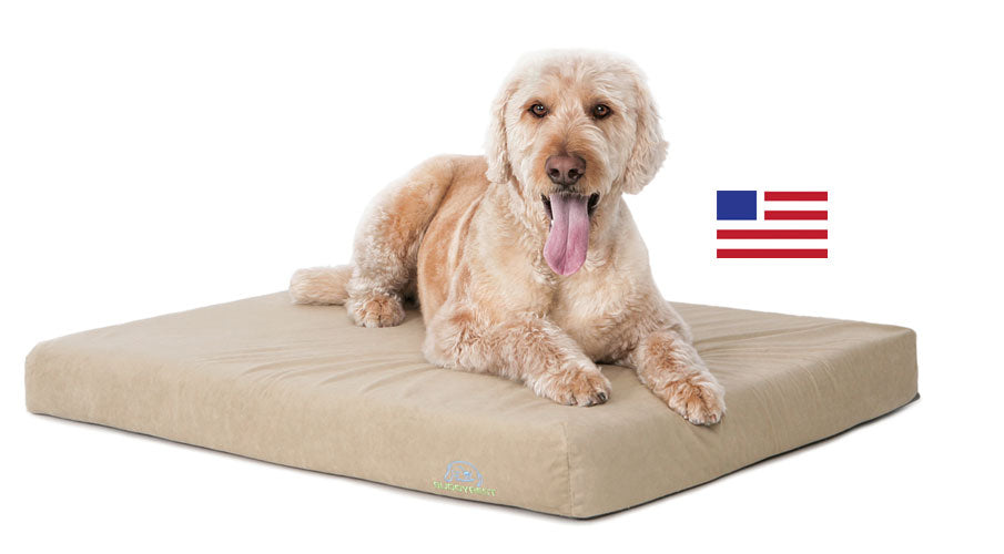 Romeo Orthopedic Bolster Dog Bed. Made In The USA