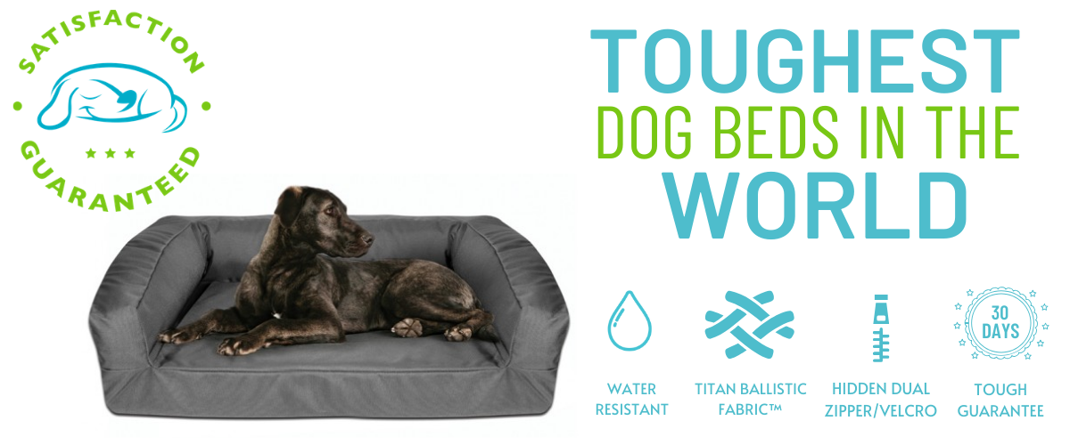 Tough Dog Beds Banner