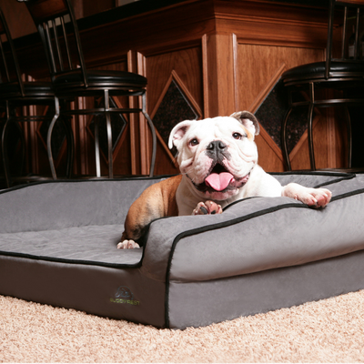 Crown Supreme Memory Foam Dog Bed