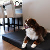 Tough Buddy Titan Memory Foam Dog Bed