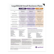 Small Business 10, 50, 100 Plans - USA Flyer