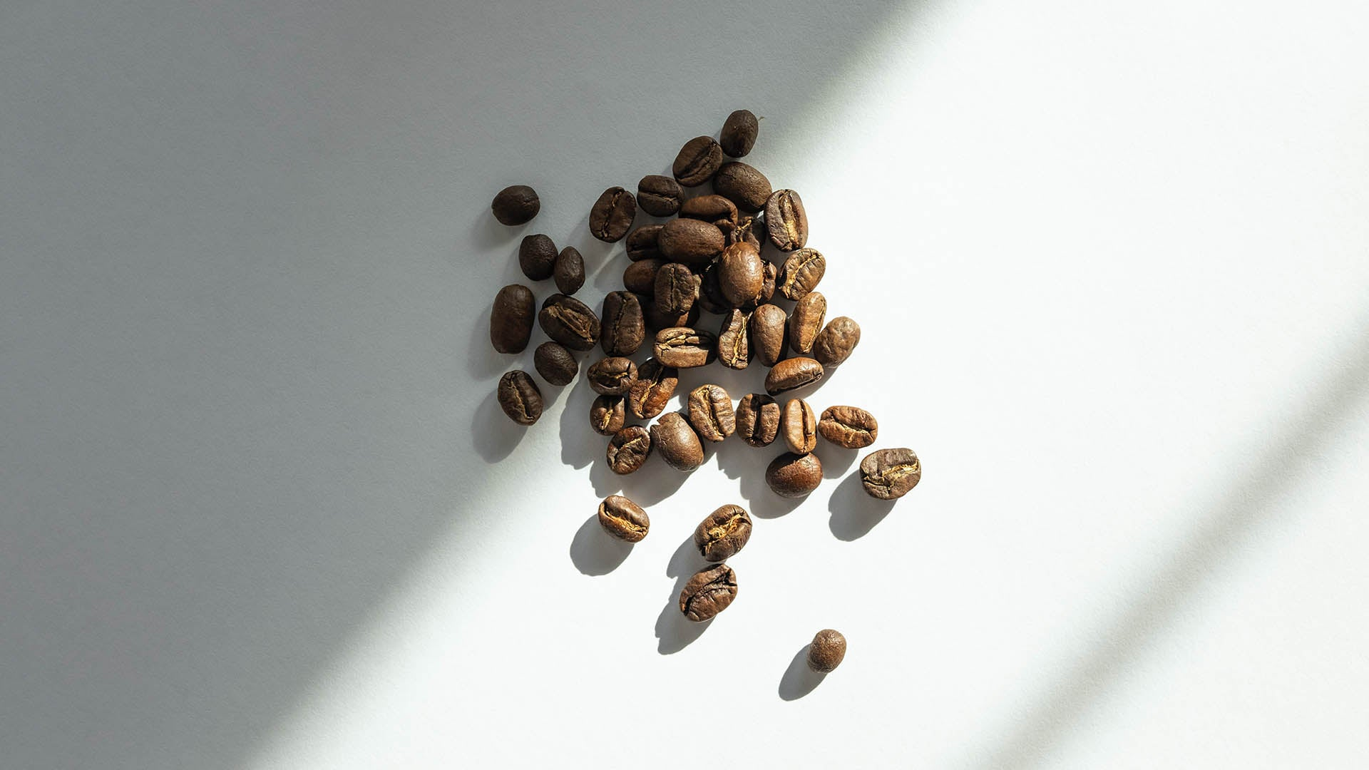 Coffee Beans Tailor Skincare