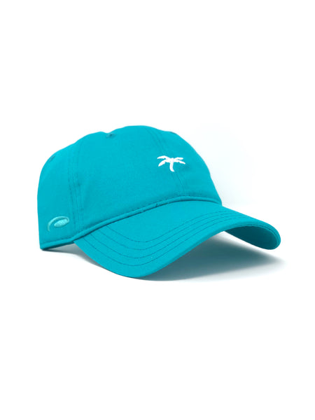 Dad hat teal