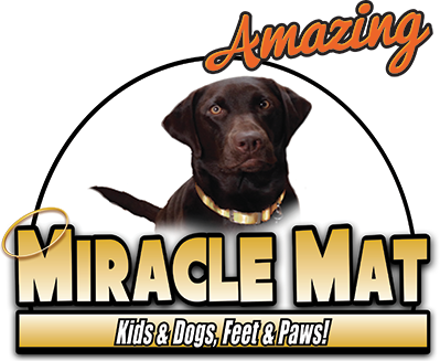 Best Doormats For Dogs As Seen On Tv Door Mat Miracle Mat