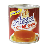 ANGEL CONDENSADA 380ML