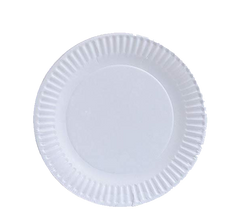 CHOICE PAPER PLATE ORDINARY WHITE 9INCHES 25S