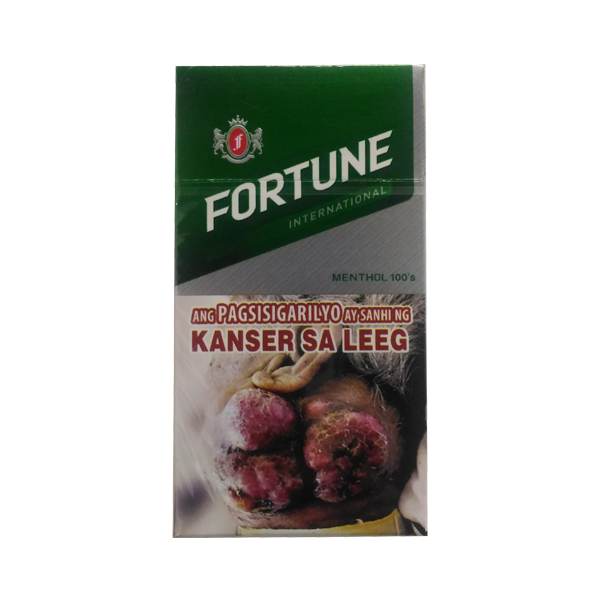 FORTUNE INTERNATIONAL MENTHOL FLIP TOP BOX PACK