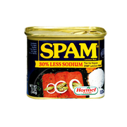 SPAM 30 % LESS SODIUM LUNCHEON MEAT 340G