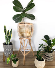 Rattan Pot Plant Stand - Large