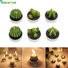 Cactus Succulent Plant Shape Candles ; Home and Bedroom Decor.