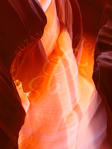 Antelope Canyon I - Suzanne Barton - Limited Edition