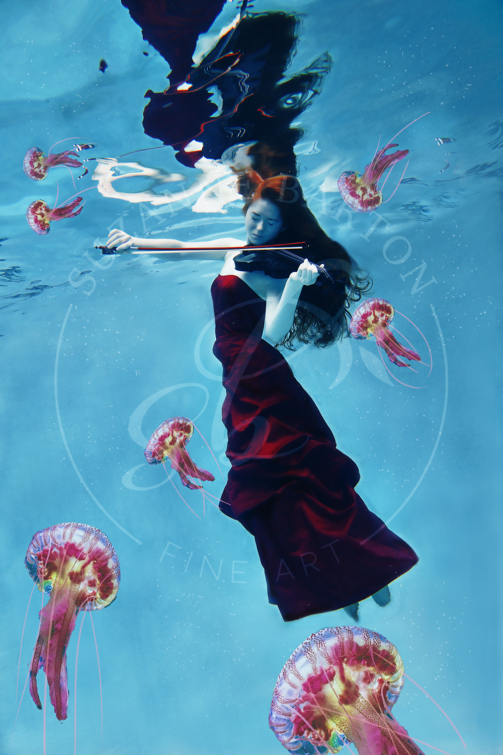 Jammin' with Jellies - Suzanne Barton - Limited Edition