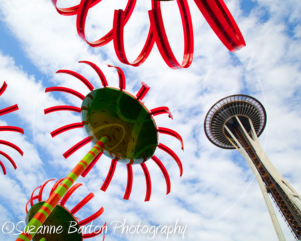 Seattle - Suzanne Barton - Limited Edition