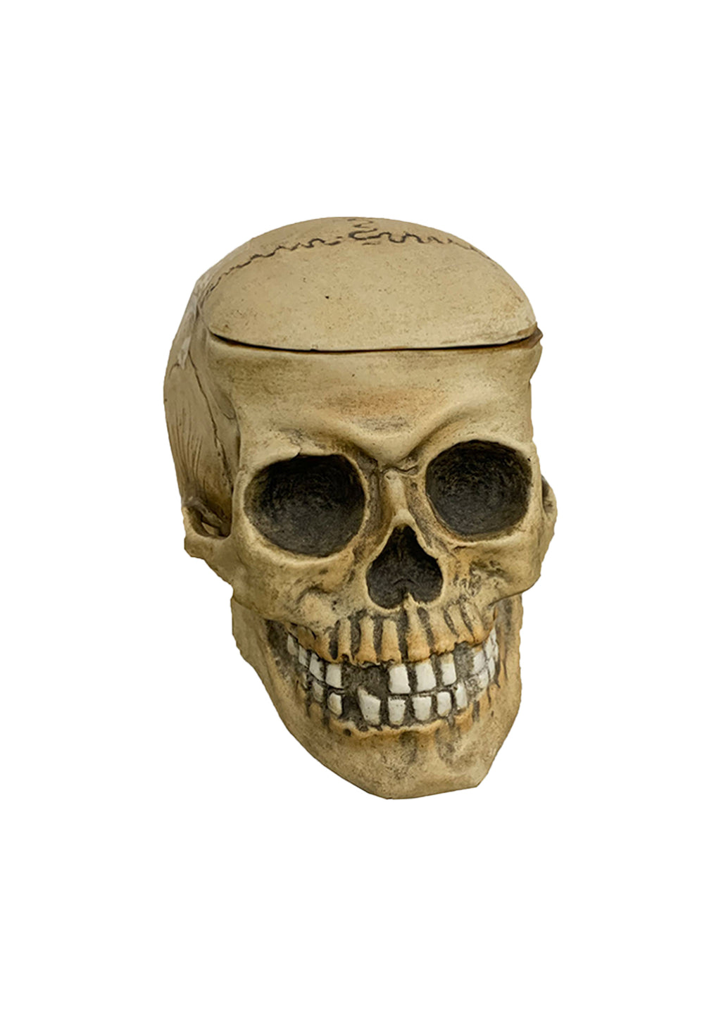 19TH CENTURY SMALL SKULL HUMIDOR  BY E. BOHNE - Accessories - Libertine