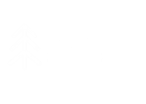 Abstract Element