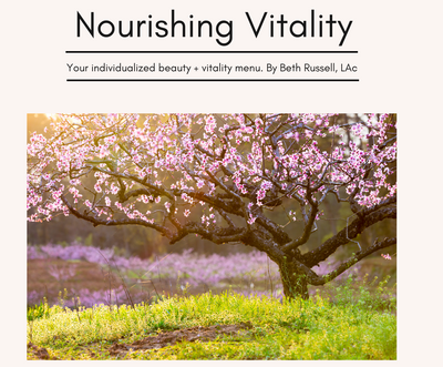 Nourishing Vitality Beauty Menu