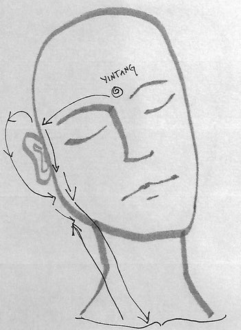 Generic hand-drawn greyscale face, with arrows pointing up the neck and jaw towards the ear.
