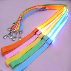 LED Dog Leash for Night Safety - Pets and Fashion
