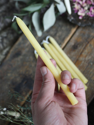 7 Pack of Beeswax Vigil Candles