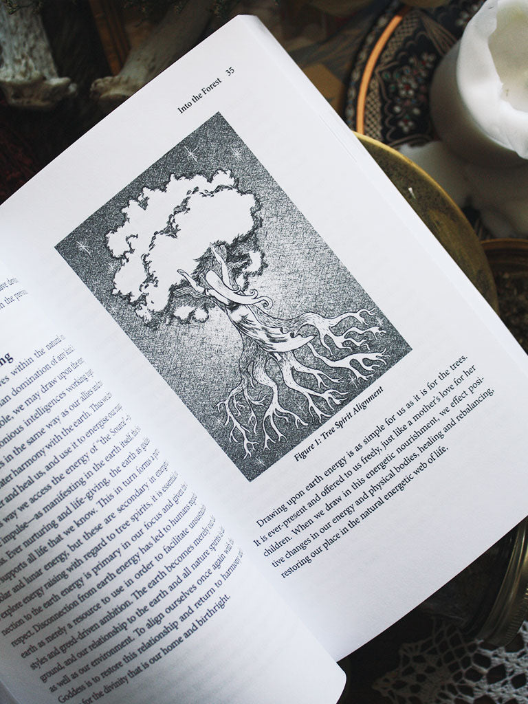 Celtic Tree Magic Book