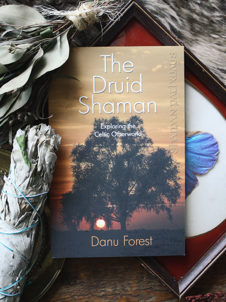Druid Shaman: Exploring the Celtic Otherworld