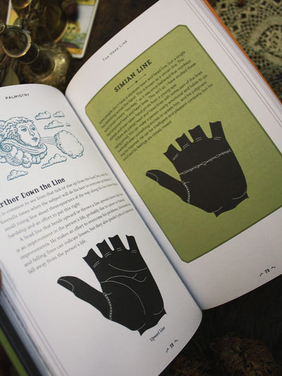 In Focus Palmistry Book