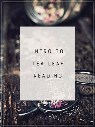 Intro to Tea Leaf Reading