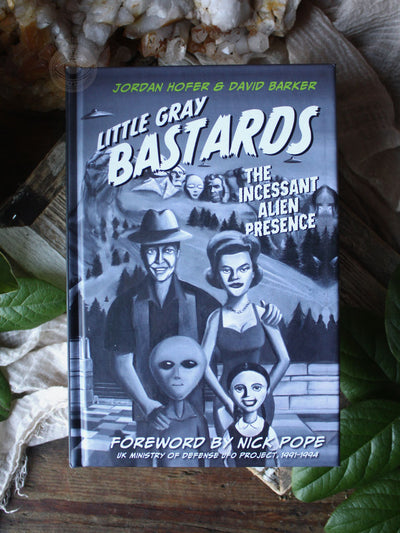 Little Gray Bastards - The Incessant Alien