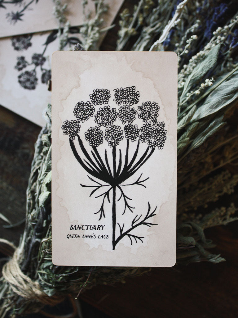 Pythia Botanica Oracle Deck by Leila + Olive